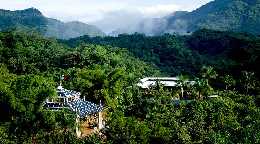 Botanical Gardens In Puerto Vallarta The Best Rates In