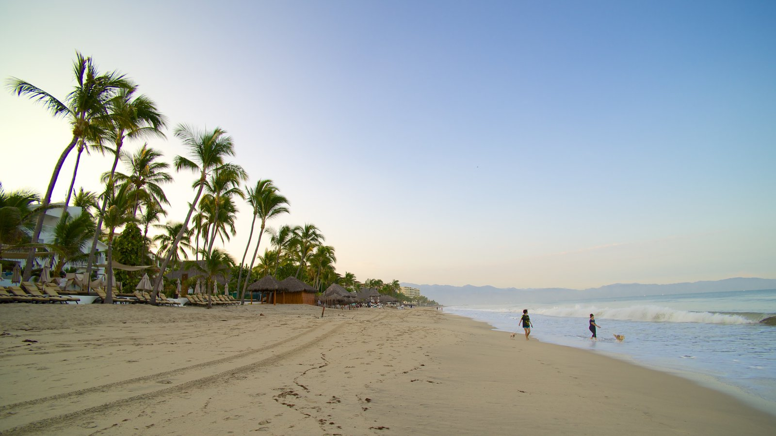 137746-South-Coast-Nayarit